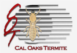 Image result for cal oaks termite